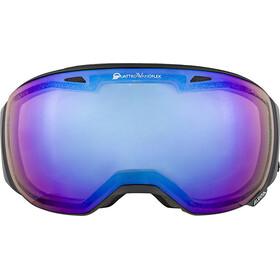 Alpina Big Horn QVMM Goggles black matt